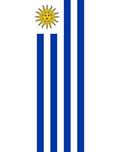 Ausleger-Flagge:  Uruguay  |  Hochformat Fahne | 3.5m² | 300x120cm