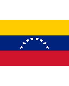 Flag: Venezuela |  landscape flag | 0.96m² | 10sqft | 80x120cm | 2.5x4ft