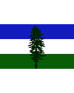 Flag: Cascadia | Cascadia, based on en Image Cascadian flag |  landscape flag | 1.35m² | 14.5sqft | 90x150cm | 3x5ft